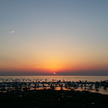 zonsondergang 1 juli 2015 strand Ter Heijde